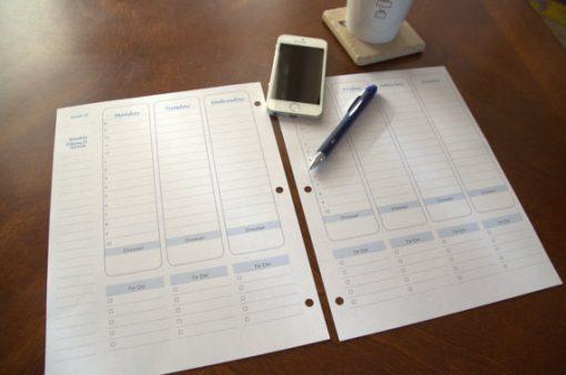 Perpetual Weekly Hourly Planner