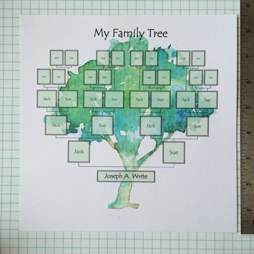 family tree school project