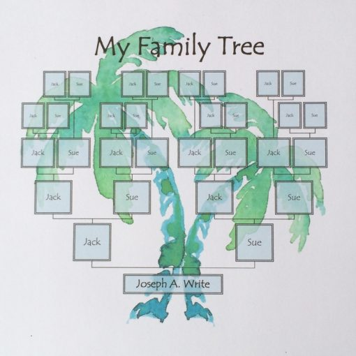 Beach palm family tree