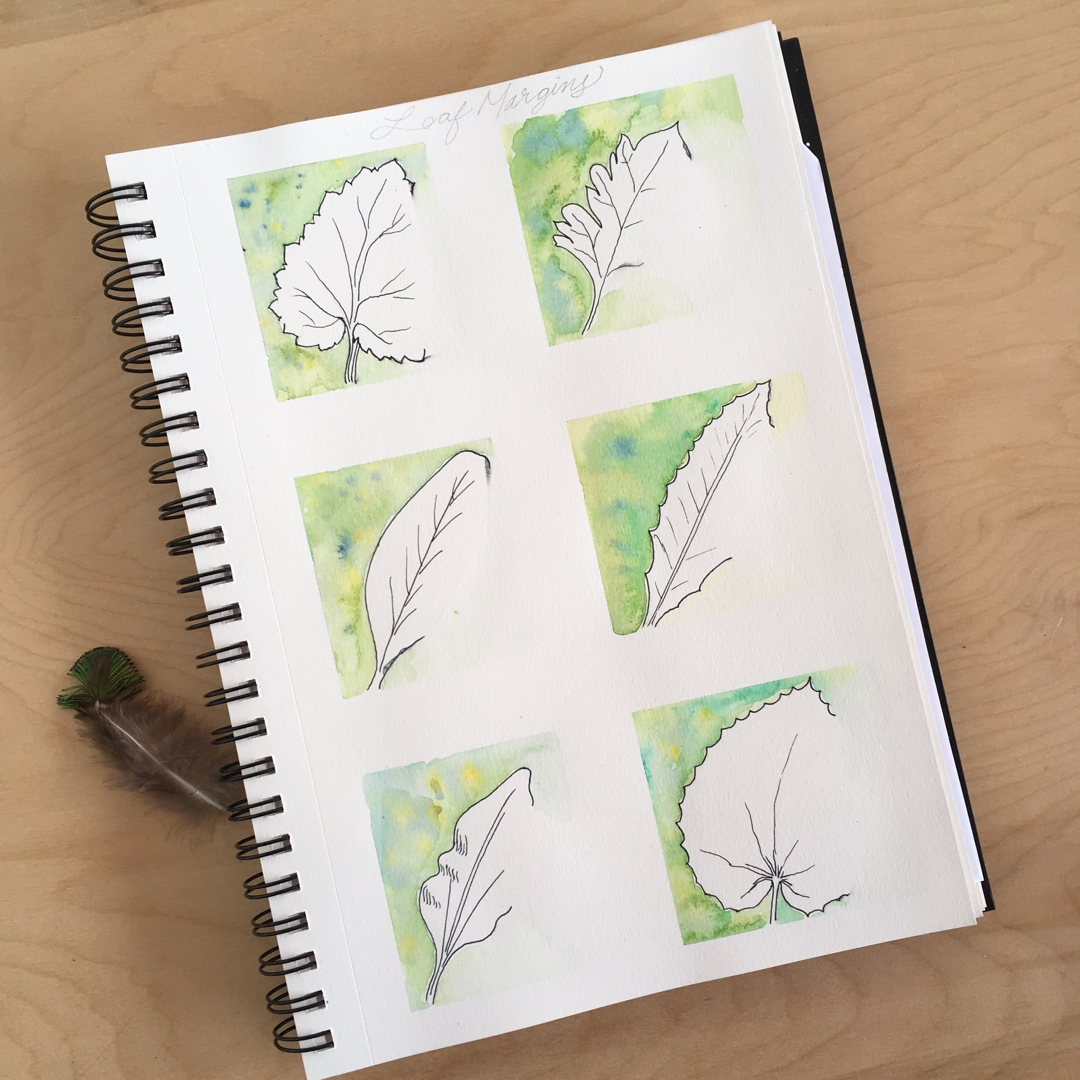 Learning to draw leaves